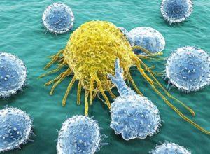 что такое иммунотерапия рака